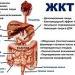 диета при гастродуодените повышенной кислотности по типу жкт